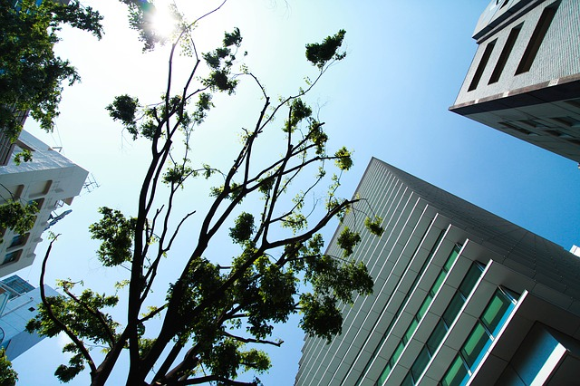 ASECフロンティア、渋谷芸術祭への協賛決定!